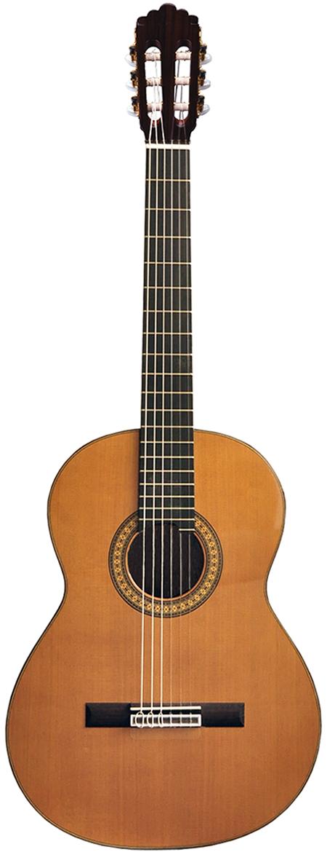 Guitarras Flamencas José Torres
